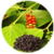Benefits of Black Pepper app for free