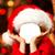 Free Christmas Photo Montage icon