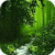 Secret Green Forest Live Wallpaper app for free