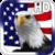 USA Flag Live Wallpaper HD icon