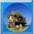 Isolated Buildings around the world app for free