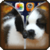 Puppy Lock Screen Zipper HD icon