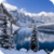 Beautiful Winter Live Wallpaper HD app for free