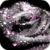 Gorgeous Grey Rose Live Wallpaper icon