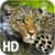 Leopard Live Wallpaper HD app for free