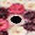 Flower photo frame imges icon