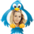Ashley Tisdale Tweets app for free