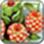 Fruit Carving Image_1 app for free