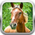 3D Horse Simulator Game app for free
