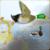 Hunter 2015 icon