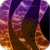 Magic Toroids LWP icon