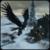 Harpy Simulator Adventure icon