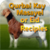 Qurbani Masail OR Eid Recipes app for free
