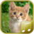 Cats sounds app app for free