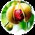 Benefits of Nutmeg app for free