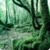 forestscape icon