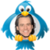 Jim Carrey - Tweets app for free