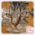 Jigsaw Pet Cat icon