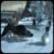 Monster Dog Simulator 3D icon