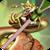 Snake Zipper Lock Screen icon