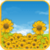 Sunflower Field Live Wallpaper icon