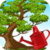 Bonsai Tree Care app for free
