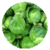 Benefits of Brussels Sprout app for free