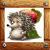 Hedgehog - apple seeker app for free