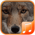 Coyote Sounds app app for free
