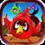 King Bird Fling Java icon
