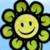 Go  Flower  Grow icon