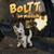 Boltt On Mission icon
