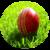 Cricket Commentators icon