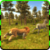 Wild Life - Lion app for free