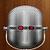 VoiceGuard icon