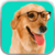 Free Dog Sounds icon