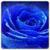 HD Blue Live Wallpaper icon