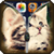 Kitten Zipper Lock Screen HD app for free
