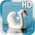 Swan Bird Live Wallpaper app for free