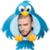 Justin Timberlake - Tweets app for free