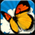 Chinese Butterflies icon
