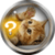 Animal Quiz free icon