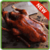 Chinese recipes food icon