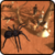 Spider Simulator 3D icon