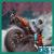 Moto Crash Racing Free icon