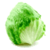 Benefits of Iceberg  lettuce app for free