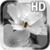 Black and White Flower LWP icon