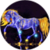 Purple Horse LWP app for free