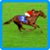 Royal Derby- Spin3 icon