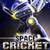 Space Cricket icon